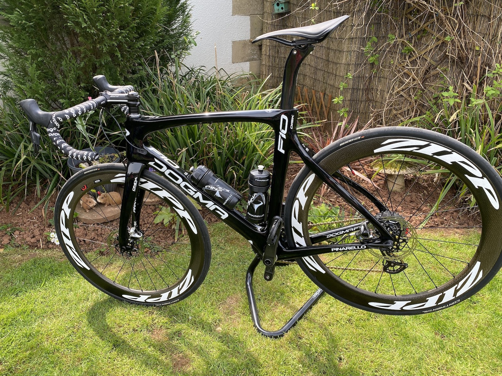 Private: 2018 Pinarello F10 Disk